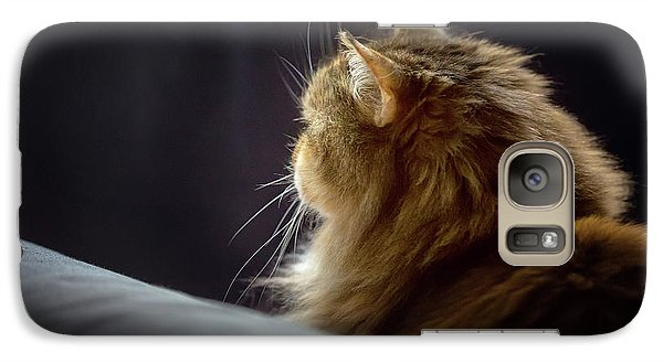 Galaxy Case featuring the photograph Whiskers In The Morning Light by Debby Herold