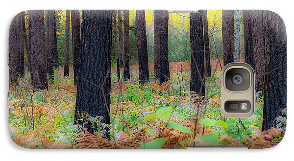 Galaxy Case featuring the photograph Whispering Woods by Mary Amerman