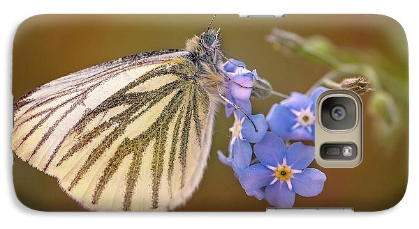 Galaxy Case featuring the photograph White And Creamy Butterfly On Forget Me Not Flower by Jaroslaw Blaminsky
