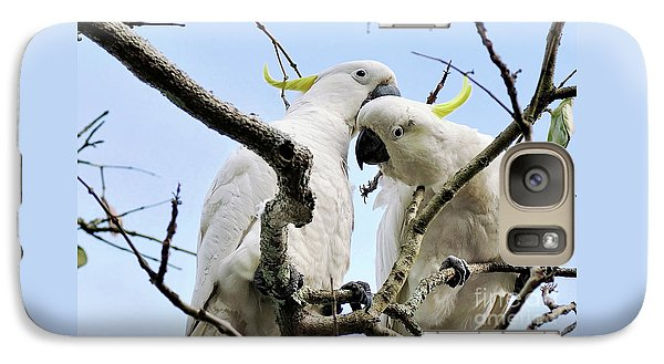 White Cockatoos Galaxy S7 Case by Kaye Menner