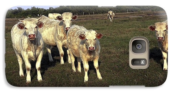 Galaxy Case featuring the photograph White Cows by Sally Weigand