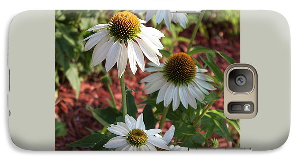 Galaxy Case featuring the photograph White Echinacea In Pastel by Suzanne Gaff