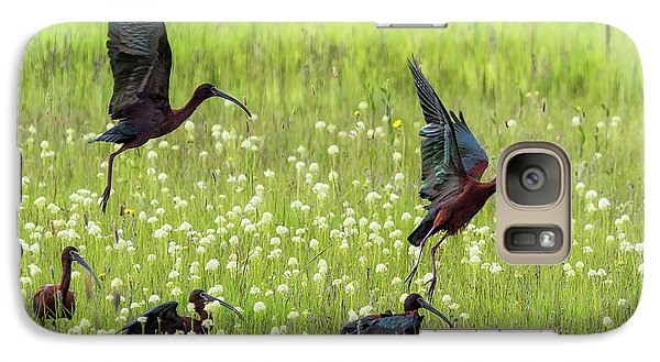 White-faced Ibis Rising, No. 1 Galaxy S7 Case