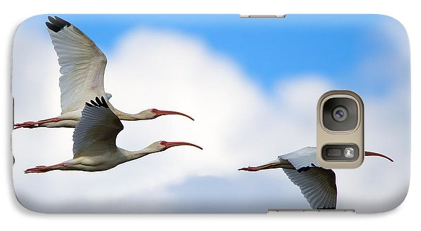Ibis Galaxy S7 Case - White Ibis Flock by Mike Dawson