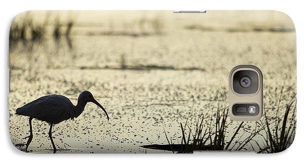 Ibis Galaxy S7 Case - White Ibis Morning Hunt by Dustin K Ryan