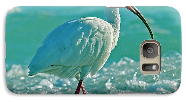 Ibis Galaxy S7 Case - White Ibis Paradise by Betsy Knapp