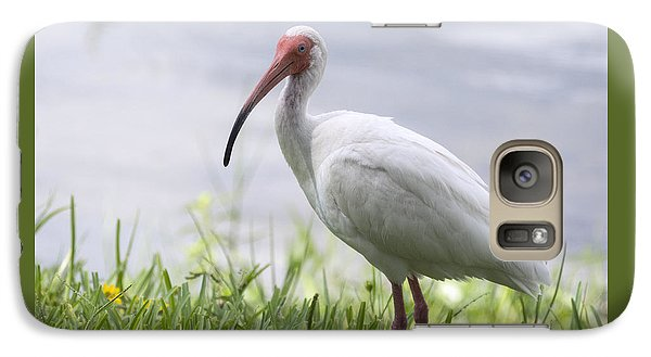 White Ibis  Galaxy S7 Case by Saija  Lehtonen