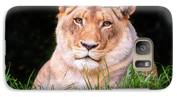 Galaxy Case featuring the photograph White Lion by Alexey Stiop