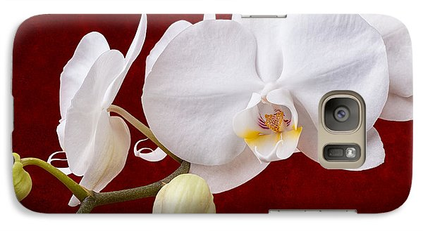 Orchid Galaxy S7 Case - White Orchid Closeup by Tom Mc Nemar
