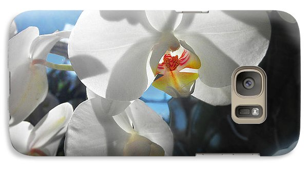Galaxy Case featuring the photograph White Orchids by David Klaboe