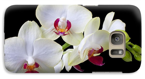 Orchid Galaxy S7 Case - White Orchids by Garry Gay