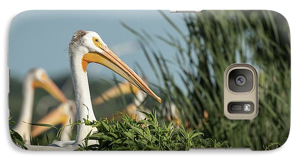 Galaxy Case featuring the photograph White Pelican 7-2015 by Thomas Young