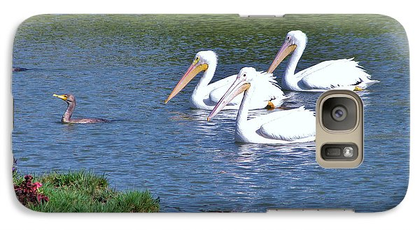 Galaxy Case featuring the photograph White Pelicans by Martha Ayotte