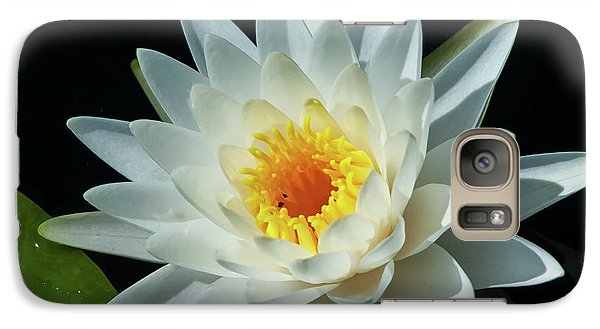 Galaxy Case featuring the photograph White Pond Lily by Arthur Dodd