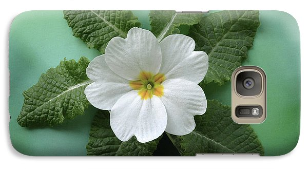 Galaxy Case featuring the photograph White Primrose by Terence Davis