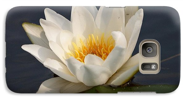 Galaxy Case featuring the photograph White Waterlily 1 by Jouko Lehto
