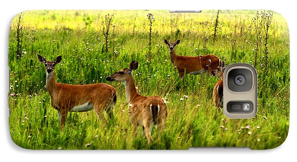 Galaxy Case featuring the photograph Whitetail Deer Family by Barbara Bowen