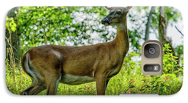 Galaxy Case featuring the photograph Whitetail Deer  by Thomas R Fletcher