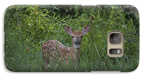 Galaxy Case featuring the photograph Whitetail Fawn 20120711_37a by Tina Hopkins