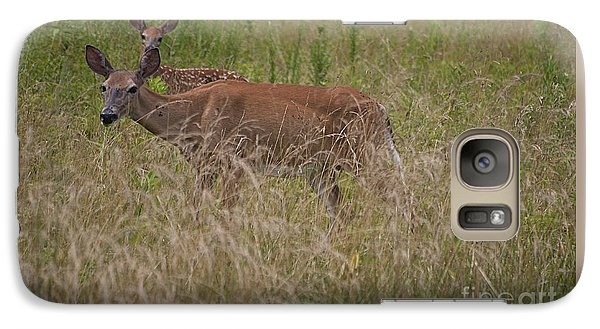 Galaxy Case featuring the photograph Whitetail With Fawn 20120707_09a by Tina Hopkins