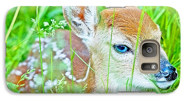 Galaxy Case featuring the photograph Whitetailed Deer Fawn by A Gurmankin