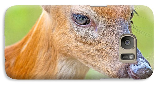Galaxy Case featuring the photograph Whitetailed Deer Fawn Portrait by A Gurmankin