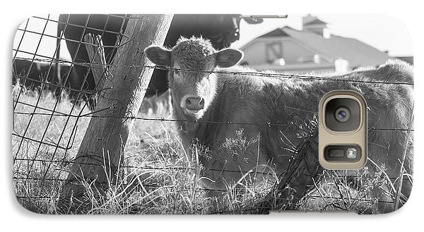 Galaxy Case featuring the photograph Who Are You, Angus Cows Seem To Ask by Toni Hopper