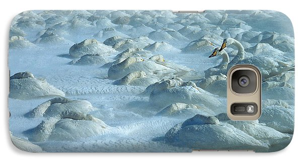 Whooper Swans In Snow Galaxy S7 Case by Teiji Saga and Photo Researchers