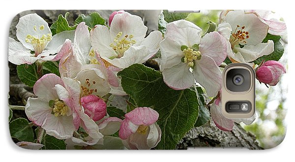Galaxy Case featuring the photograph Wild Apple Blossoms by Angie Rea