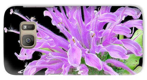 Galaxy Case featuring the photograph Wild Bergamot Also Known As Bee Balm by Jim Hughes