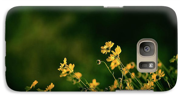 Galaxy Case featuring the photograph Evening Wild Flowers by Kelly Wade