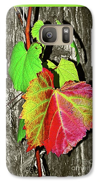 Galaxy Case featuring the photograph Wild Grape Vine By Kaye Menner by Kaye Menner