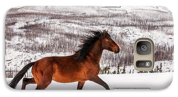 Horse Galaxy S7 Case - Wild Horse by Todd Klassy
