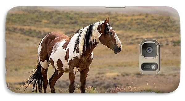 Wild Mustang Stallion Picasso Of Sand Wash Basin Galaxy S7 Case