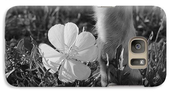 Wild Primrose With Dog's Foot Galaxy S7 Case