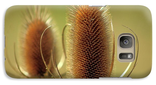 Galaxy Case featuring the photograph Wild Teasel by Bruce Patrick Smith