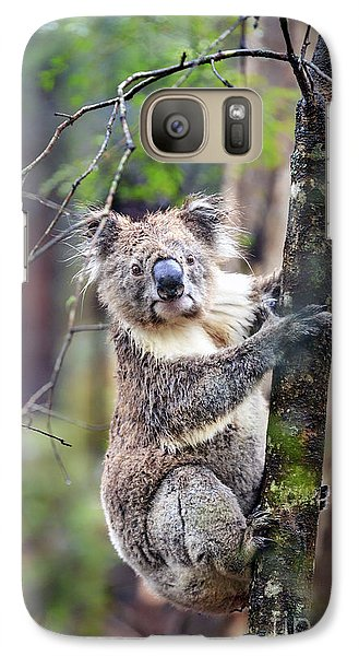 Koala Galaxy S7 Case - Wildest Dreams by Evelina Kremsdorf