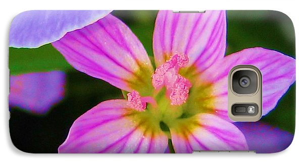 Galaxy Case featuring the photograph Wildflower by Susan Carella