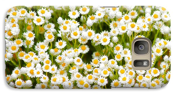 Galaxy Case featuring the photograph Wildflowers by Holly Kempe