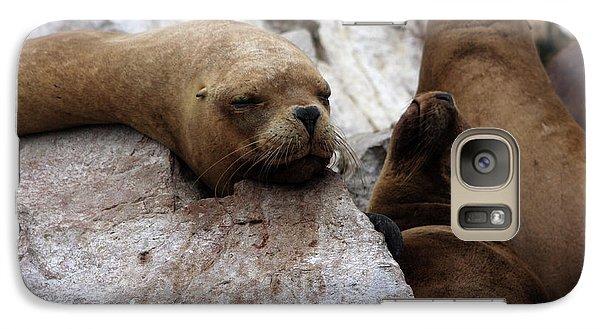 Galaxy Case featuring the photograph Wildlife Of The Ballestas Islands by Aidan Moran
