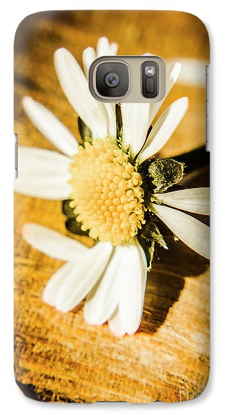 Daisy Galaxy S7 Case - Wilt by Jorgo Photography - Wall Art Gallery