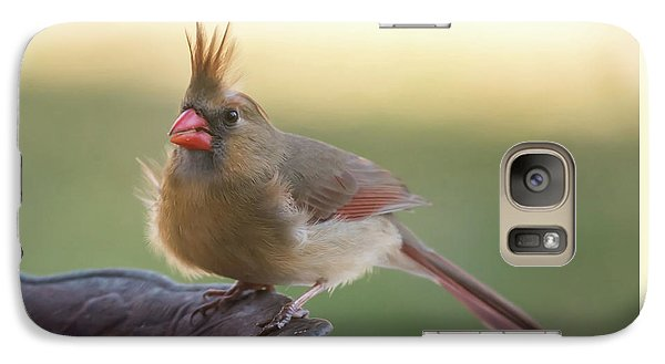 Galaxy Case featuring the photograph Wind Blown Cardinal  by Terry DeLuco