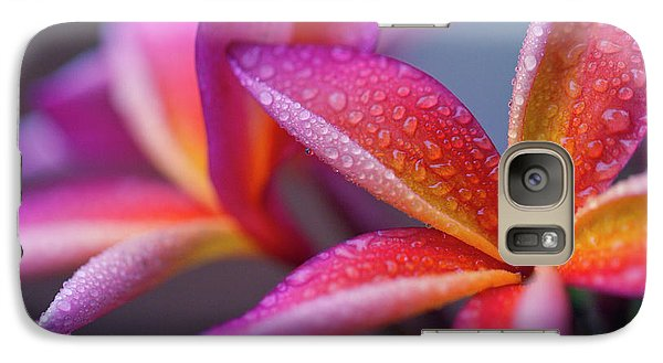 Galaxy Case featuring the photograph Windows Into Nature by Sharon Mau