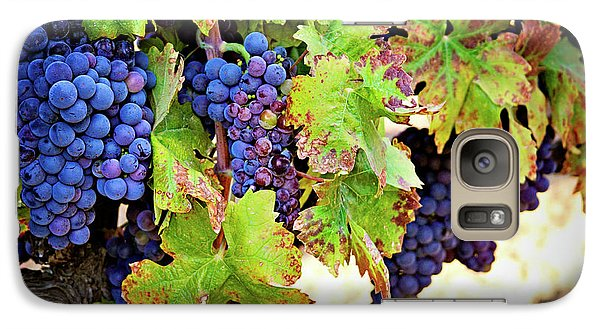 Galaxy Case featuring the photograph Wine Country - Napa Valley California Photography by Melanie Alexandra Price