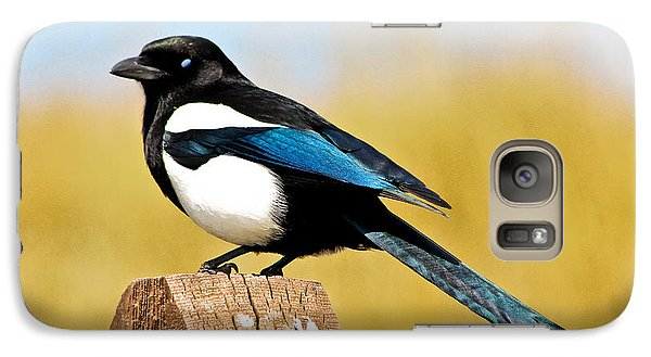 Magpies Galaxy S7 Case - Winking Magpie by Mitch Shindelbower