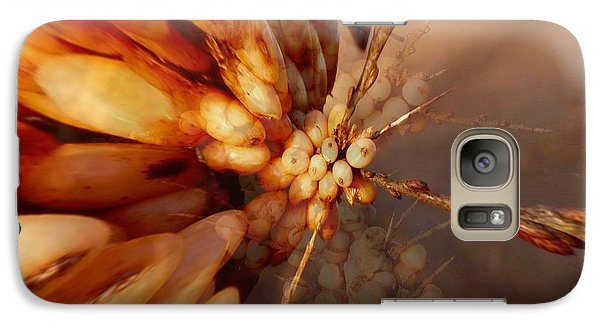 Galaxy Case featuring the photograph Winter Berries by Keith Elliott
