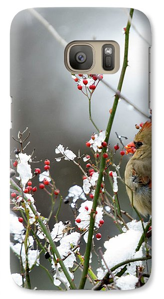 Galaxy Case featuring the photograph Winter Cardinal by Gary Wightman