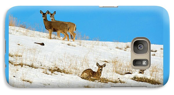 Galaxy Case featuring the photograph Winter Deer by Mike Dawson
