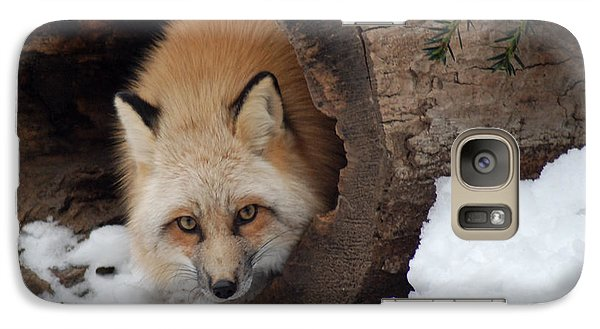 Galaxy Case featuring the photograph Winter Fox by Richard Bryce and Family