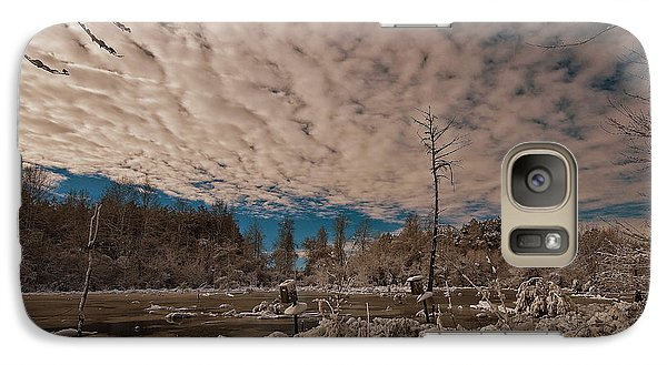 Galaxy Case featuring the photograph Winter In The Wetlands by John Harding